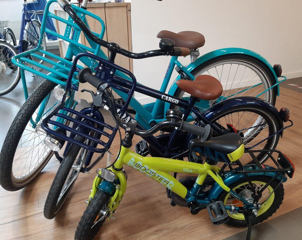 Cargo - E-Bike Gelderland